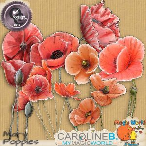 CarolineB_MaryPoppies1_1