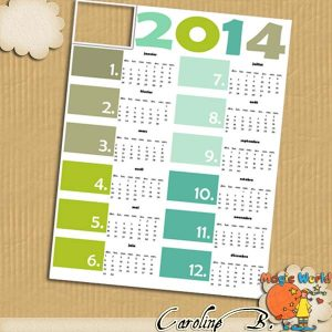 CarolineB_2014Colorful11x8_QP1_01Fr copy