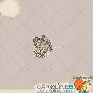 CarolineB_Dulce_Butterfly copy
