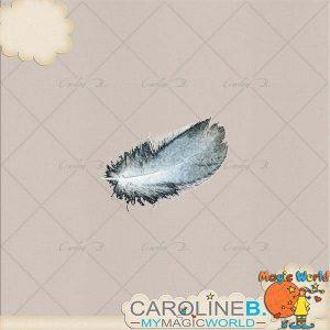 CarolineB_Dulce_Feather copy