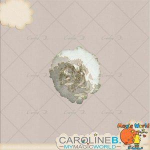 CarolineB_Dulce_Pivoine copy