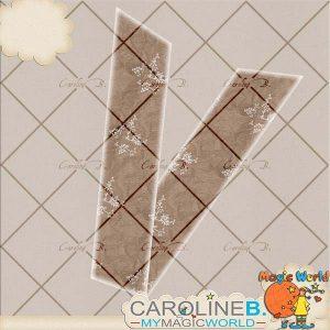 CarolineB_OneSweetDay_FolderRibbonBrown_SP