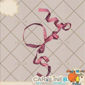 CarolineB_OneSweetDay_GinghamFrame_SP