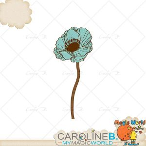 CarolineB_BelieveInLife_Anemone copy