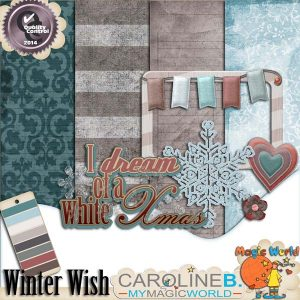 CarolineB_WinterWish2_1
