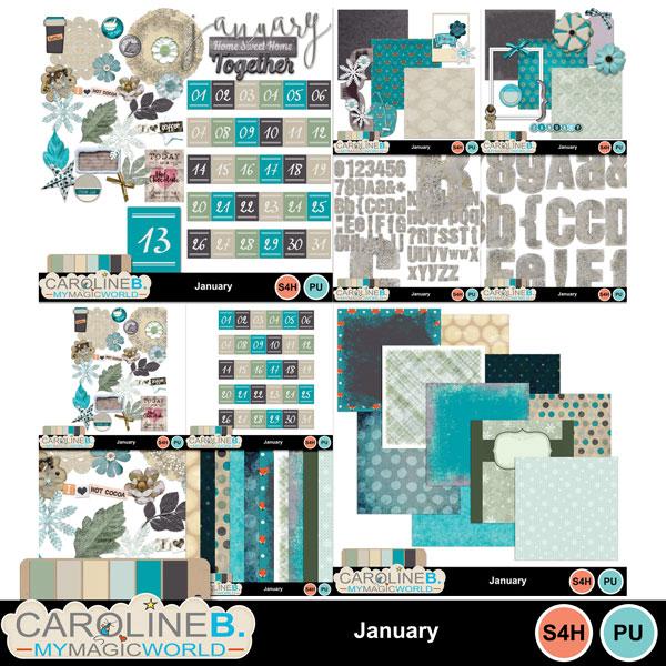 January_COLL_1