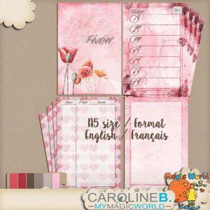 CarolineB_FebPlannerA5GabaritFR_4MMS_1 copy