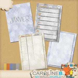 CarolineB_JanPlannerA5GabaritFR_4MMS_1