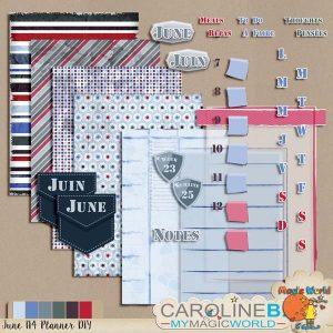 CarolineB_JuneA4Planner_DIY_1