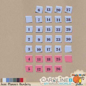 CarolineB_JunePlannerNumbers_1