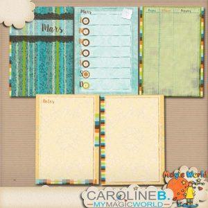CarolineB_MarchPlannerA4GabaritFR_4MMS_1