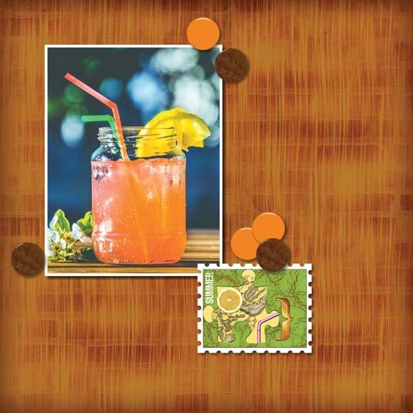 Summer Beverage 12x12 Photobook_2-008