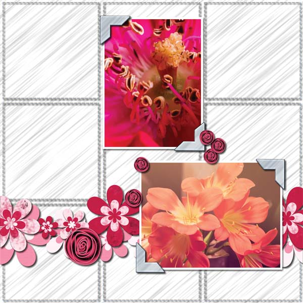 BeautifulMay12x12PB-001 600