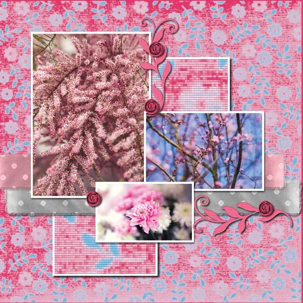 BeautifulMay12x12PB-013 600