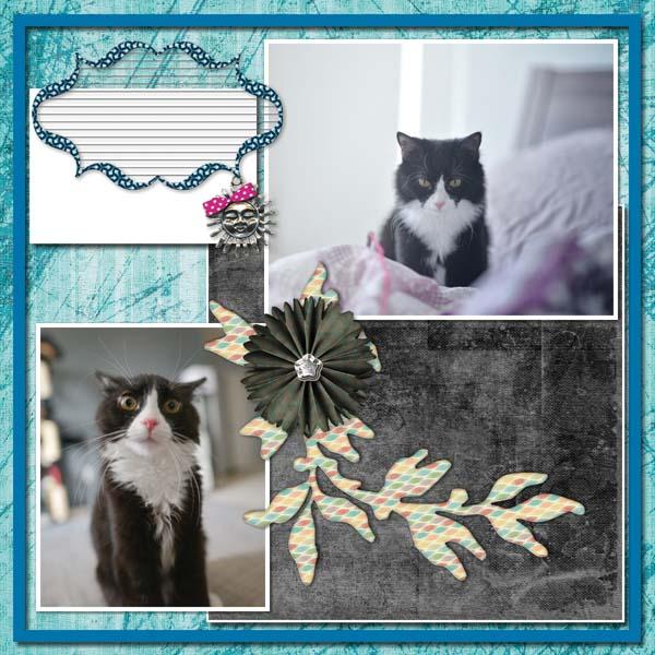Hello 12x12 Photobook-004
