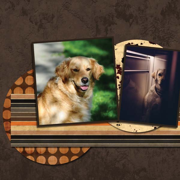 My One and my only Dog 12x12 Photobook-011